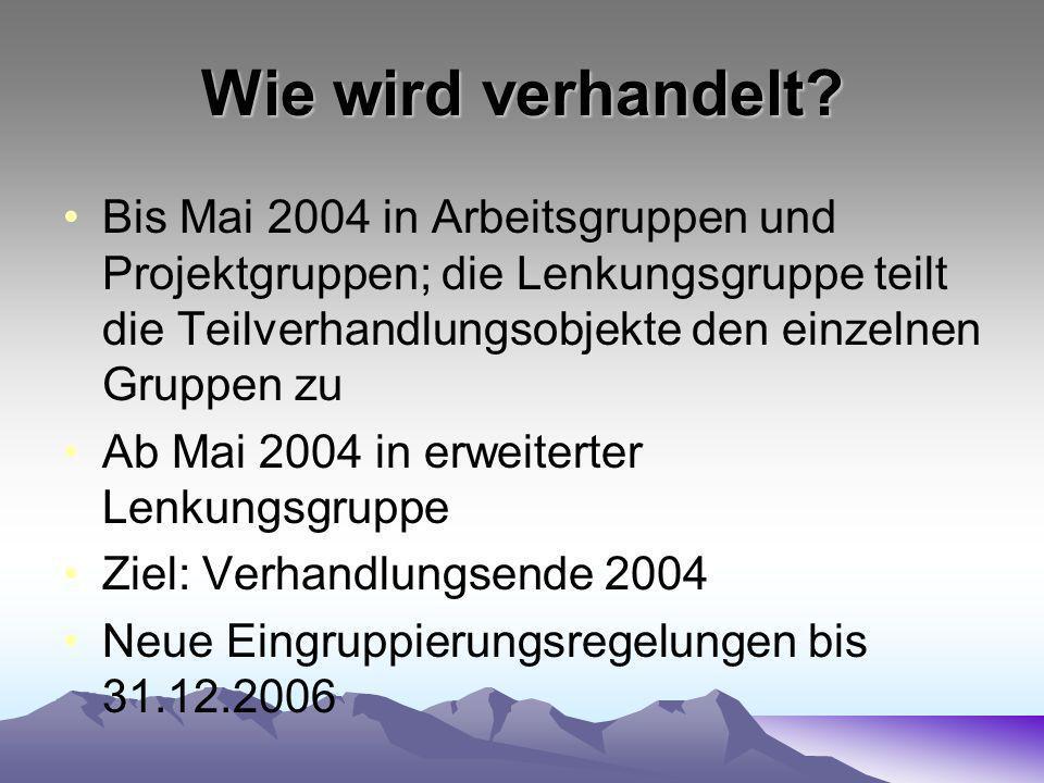 Wie wird verhandelt? Bis Mai 2004 in Arbeitsgruppen und Projektgruppen; die Lenkungsgruppe teilt die Teilverhandlungsobjekte den einzelnen Gruppen zu