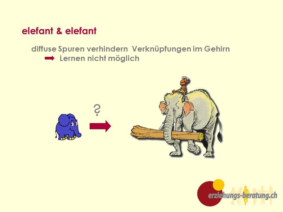 elefant & elefant diffuse Spuren verhindern Verknüpfungen im Gehirn Lernen nicht möglich ?