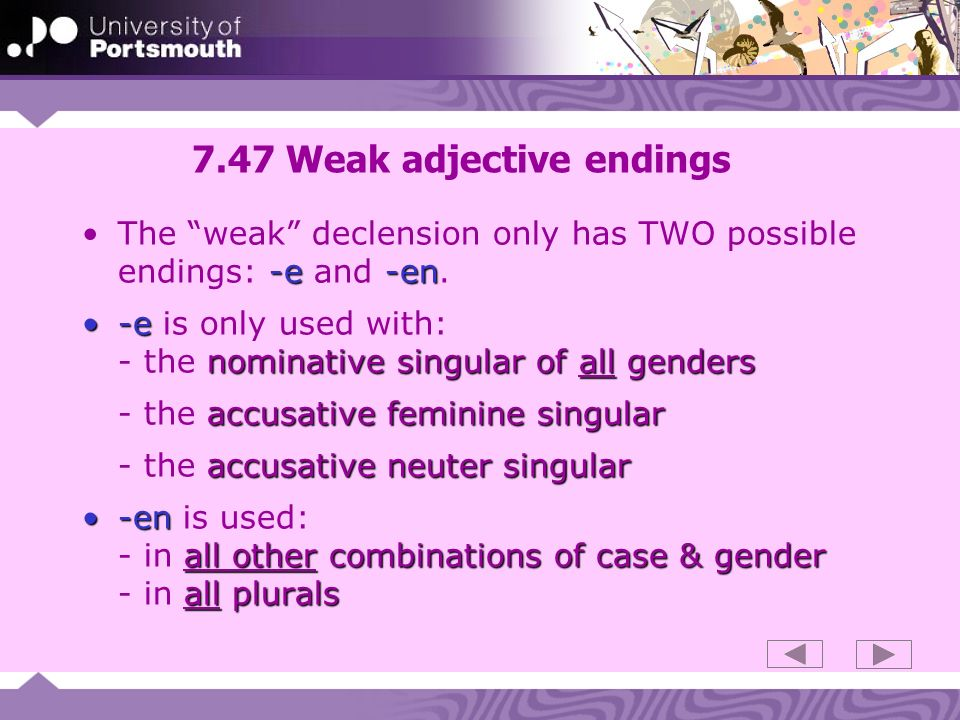7.47 Weak adjective endings -e-enThe weak declension only has TWO possible endings: -e and -en. -e nominative singular of all genders-e is only used w