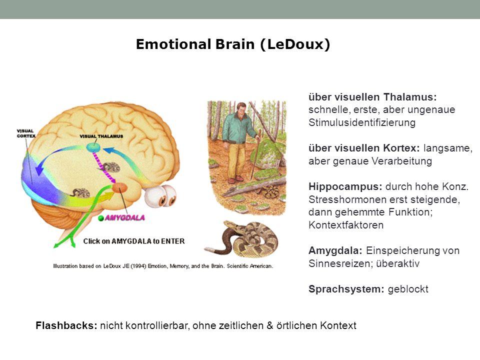 Emotional Brain (LeDoux) Flashbacks: nicht kontrollierbar, ohne zeitlichen & örtlichen Kontext über visuellen Thalamus: schnelle, erste, aber ungenaue