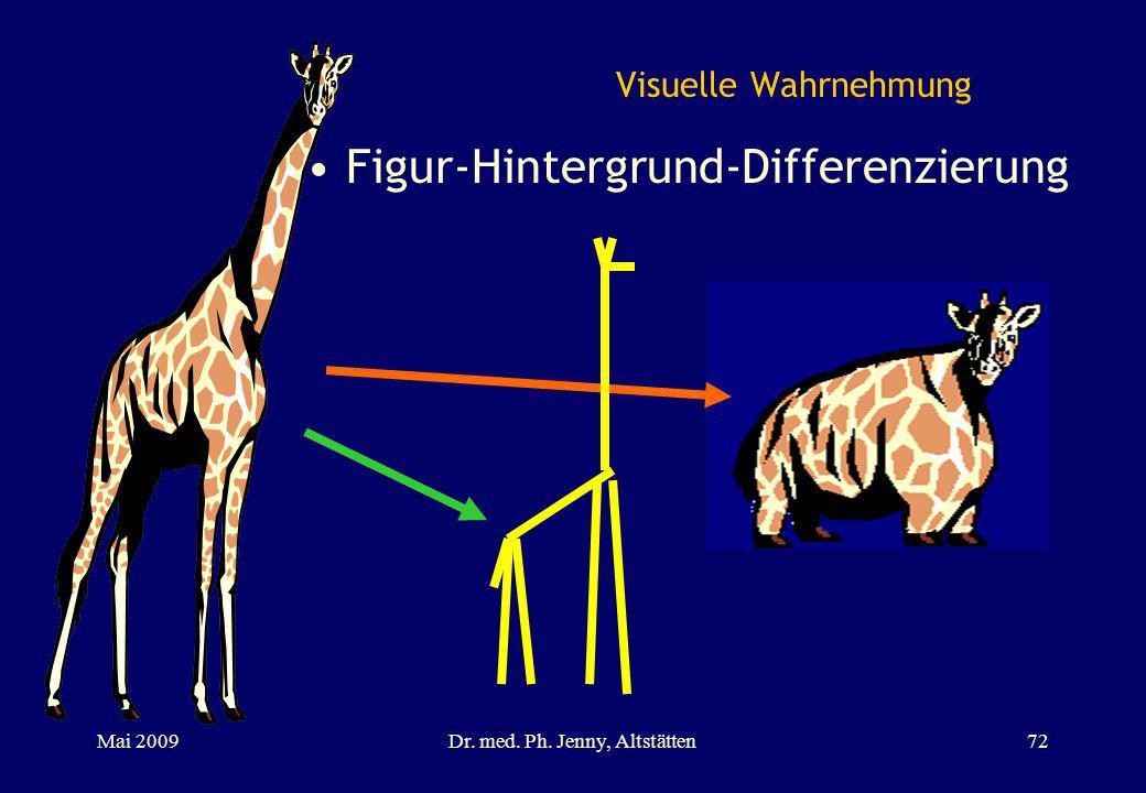 Visuelle Wahrnehmung Figur-Hintergrund-Differenzierung Mai 2009Dr. med. Ph. Jenny, Altstätten72