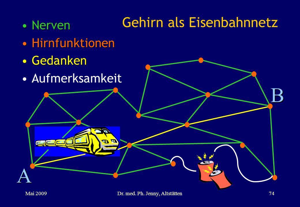Gehirn als Eisenbahnnetz NervenNerven HirnfunktionenHirnfunktionen GedankenGedanken Aufmerksamkeit A B Mai 2009Dr. med. Ph. Jenny, Altstätten74