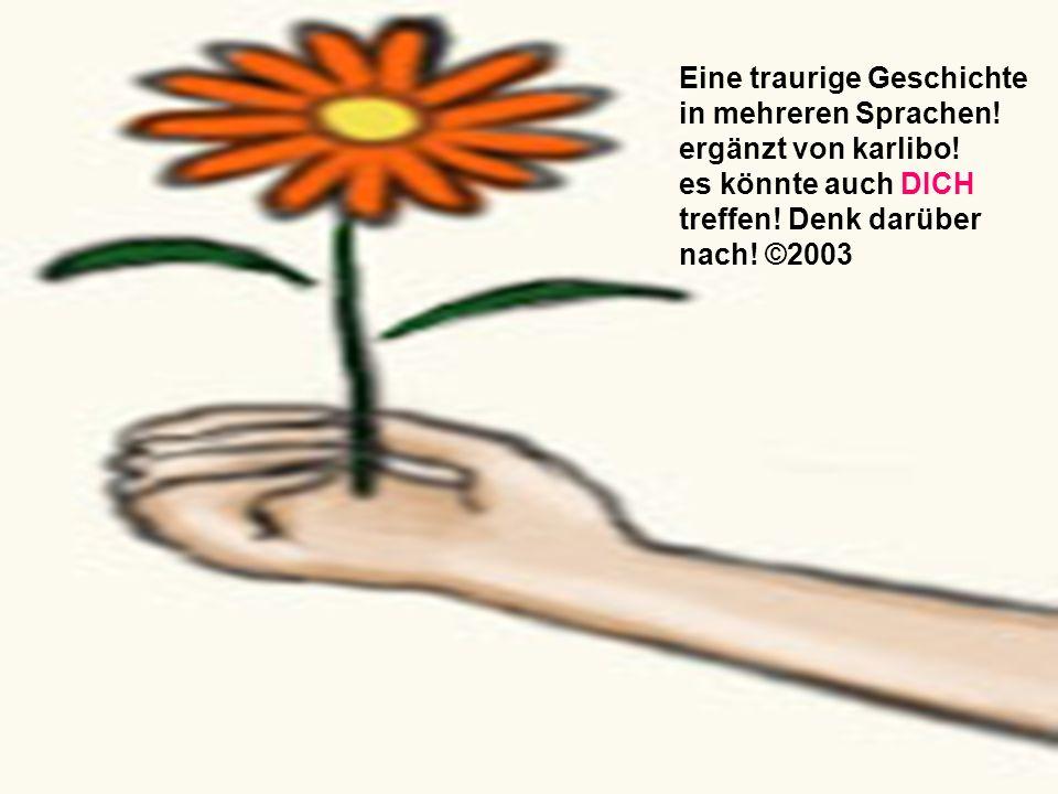 Eine traurige Geschichte in mehreren Sprachen! ergänzt von karlibo! es könnte auch DICH treffen! Denk darüber nach! ©2003