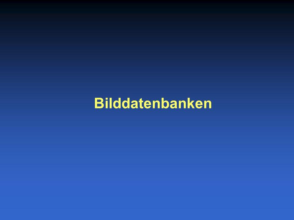 Bilddatenbanken