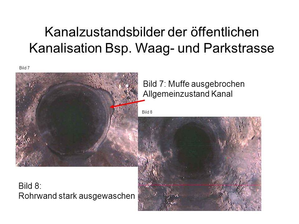 Bild 7: Muffe ausgebrochen Allgemeinzustand Kanal Bild 8: Rohrwand stark ausgewaschen Bild 7 Bild 8 Kanalzustandsbilder der öffentlichen Kanalisation Bsp.
