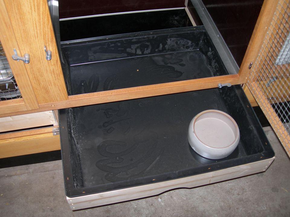 Hygiene bei Rassekaninchen 2010 22