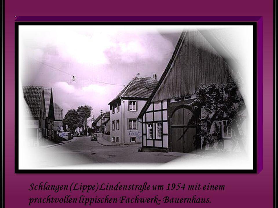 Schlangen (Lippe) Lindenstraße um 1954 mit einem prachtvollen lippischen Fachwerk- Bauernhaus.