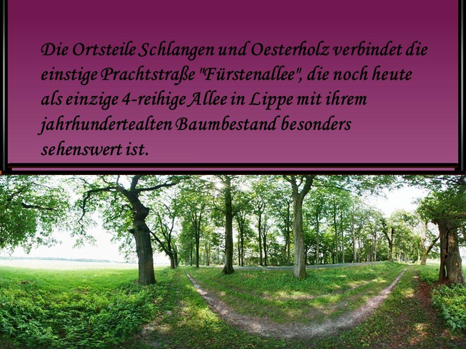 Die Ortsteile Schlangen und Oesterholz verbindet die einstige Prachtstraße Fürstenallee , die noch heute als einzige 4-reihige Allee in Lippe mit ihrem jahrhundertealten Baumbestand besonders sehenswert ist.