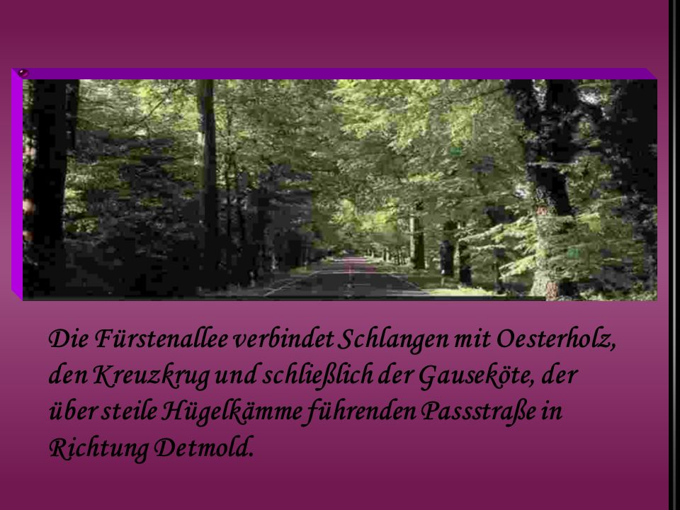 Die Fürstenallee verbindet Schlangen mit Oesterholz, den Kreuzkrug und schließlich der Gauseköte, der über steile Hügelkämme führenden Passstraße in Richtung Detmold.