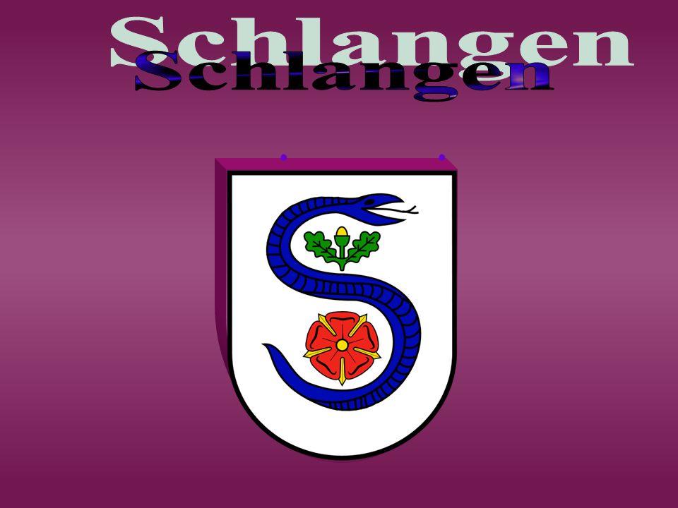 Zwischen Paderborn und Detmold, im Herzen des Naturparks Eggegebirge und südlicher Teutoburger Wald, liegt die Gemeinde Schlangen.