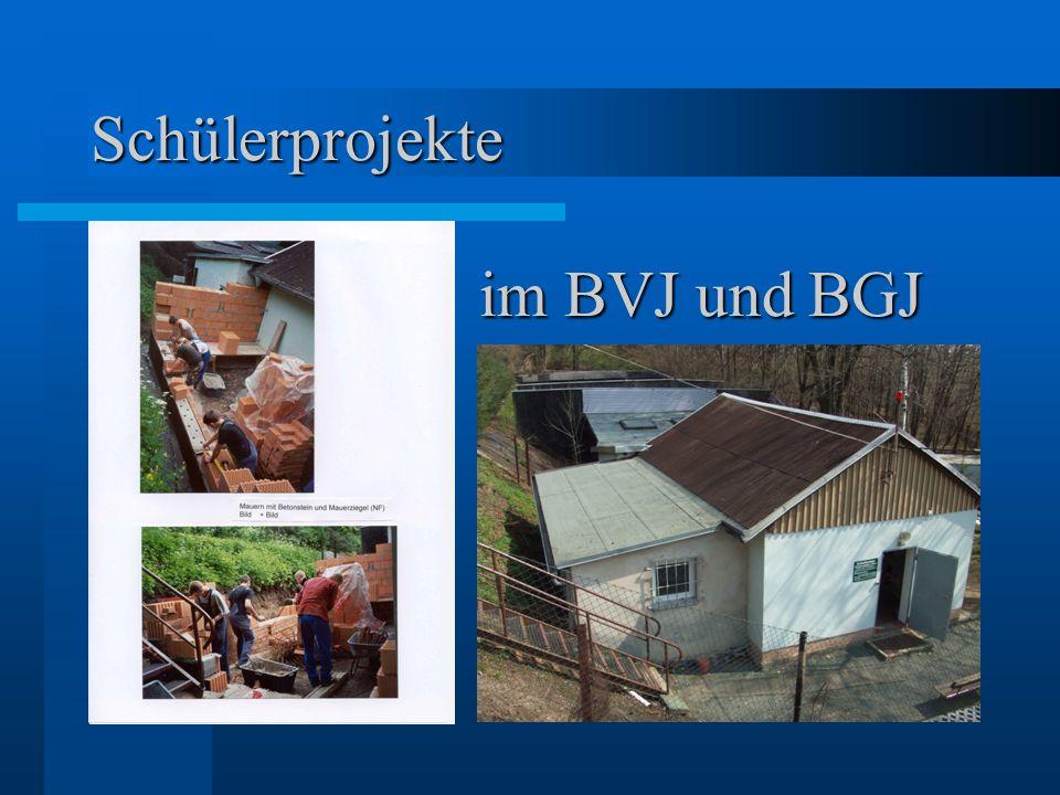Schülerprojekte im BVJ und BGJ
