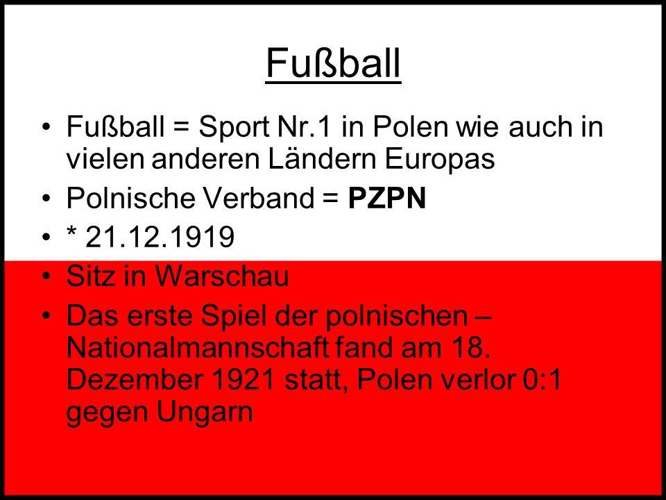 Polnischer Sport Die beliebtesten Sportarten in Polen