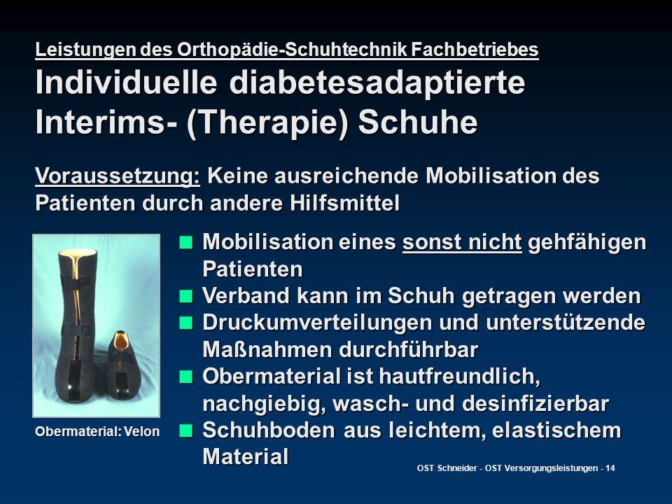 OST Schneider - OST Versorgungsleistungen - 14 Leistungen des Orthopädie-Schuhtechnik Fachbetriebes Individuelle diabetesadaptierte Interims- (Therapi