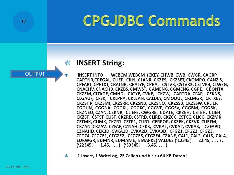 INSERT String: 'INSERT INTO WEBCM.WEBCM (CKEY, CHWB, CWB, CWGR, CAGRP, CARTNR,CREGAL, CLIEF, CILN, CLANR, CKZES, CKZSET, CKOMPO, CANZIS, CPFART, CPFTX