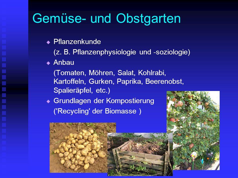 Gemüse- und Obstgarten Pflanzenkunde (z. B. Pflanzenphysiologie und -soziologie) Anbau (Tomaten, Möhren, Salat, Kohlrabi, Kartoffeln, Gurken, Paprika,