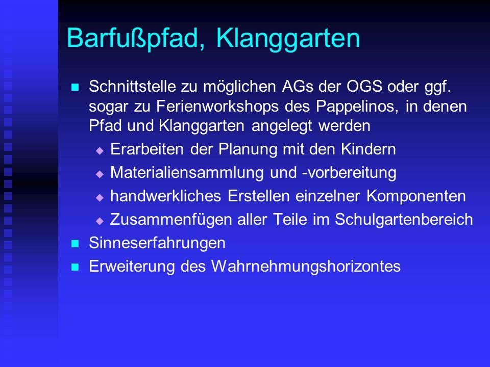 Barfußpfad, Klanggarten Schnittstelle zu möglichen AGs der OGS oder ggf. sogar zu Ferienworkshops des Pappelinos, in denen Pfad und Klanggarten angele