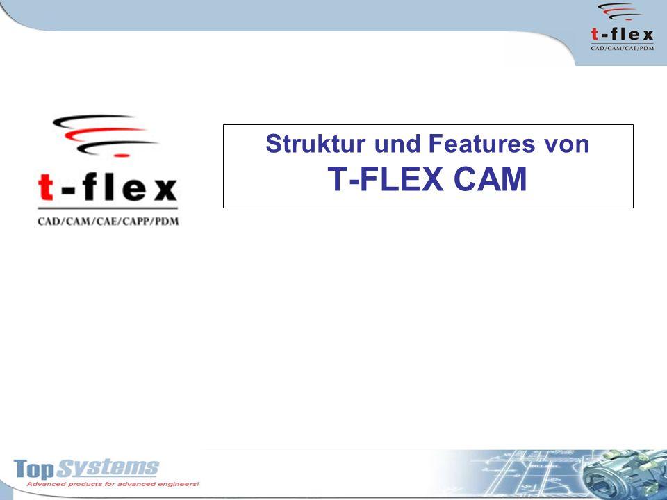 Parametrierung in T-FLEX CAM Technologische Parameter der Werkzeugwege können als parametrische Werte abgelegt und im Variableneditor von T-FLEX CAD benutzt werden.