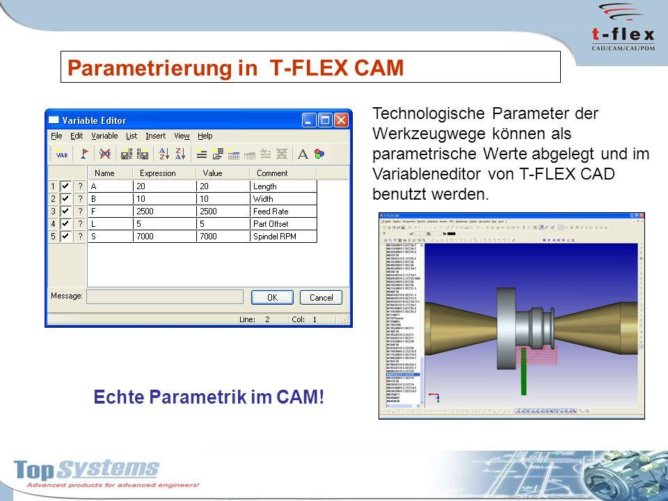 Parametrierung in T-FLEX CAM Technologische Parameter der Werkzeugwege können als parametrische Werte abgelegt und im Variableneditor von T-FLEX CAD b