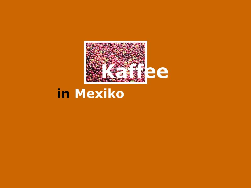 Kaffee in Mexiko