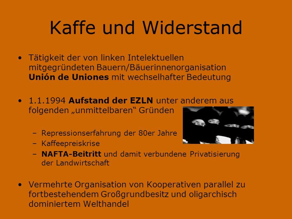 Kaffe und Widerstand Tätigkeit der von linken Intelektuellen mitgegründeten Bauern/Bäuerinnenorganisation Unión de Uniones mit wechselhafter Bedeutung
