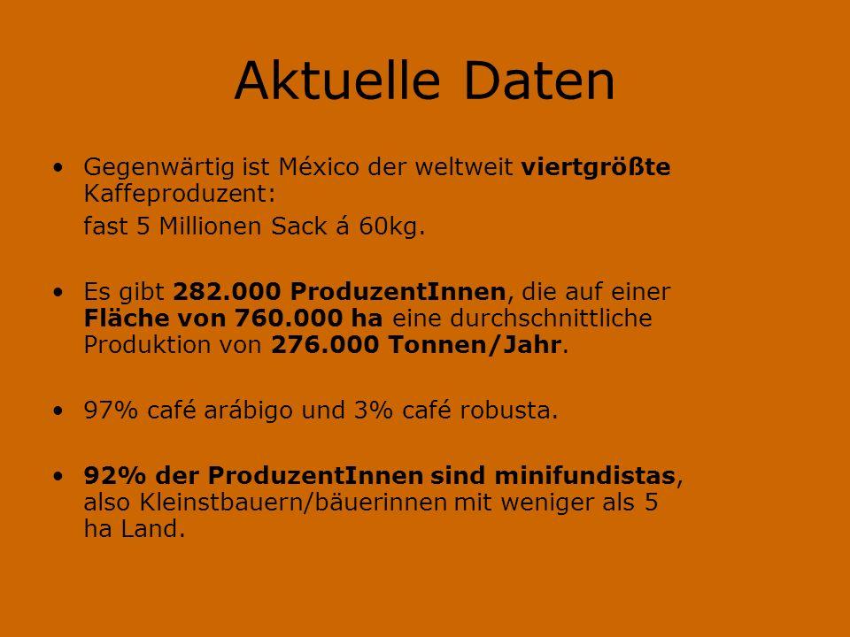 Aktuelle Daten Gegenwärtig ist México der weltweit viertgrößte Kaffeproduzent: fast 5 Millionen Sack á 60kg. Es gibt 282.000 ProduzentInnen, die auf e
