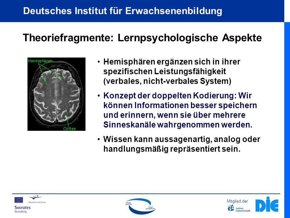 Mitglied der Deutsches Institut für Erwachsenenbildung Theoriefragmente: Lernpsychologische Aspekte Analoge Repräsentation Wie viele Fenster hat Ihr Haus auf der Vorderseite?