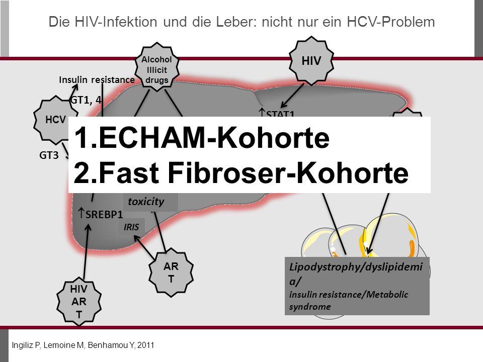 PPAR Fibrosis Insulin resistance Steatosis HIV AR T SREBP1 HIV ART Lipodystrophy/dyslipidemi a/ insulin resistance/Metabolic syndrome HCV GT3 GT1, 4 AR T Drug toxicity Lactic acidosis NASH Steatosis IRIS Alcohol Illicit drugs HIV STAT1 Ingiliz P, Lemoine M, Benhamou Y, 2011 Die HIV-Infektion und die Leber: nicht nur ein HCV-Problem 1.ECHAM-Kohorte 2.Fast Fibroser-Kohorte