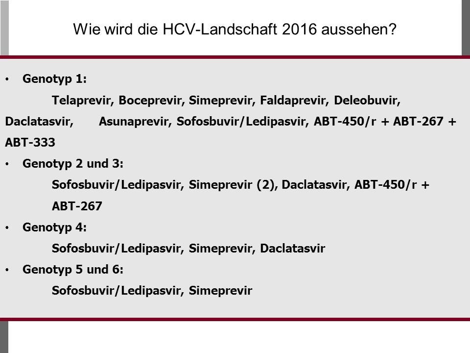 Wie wird die HCV-Landschaft 2016 aussehen.