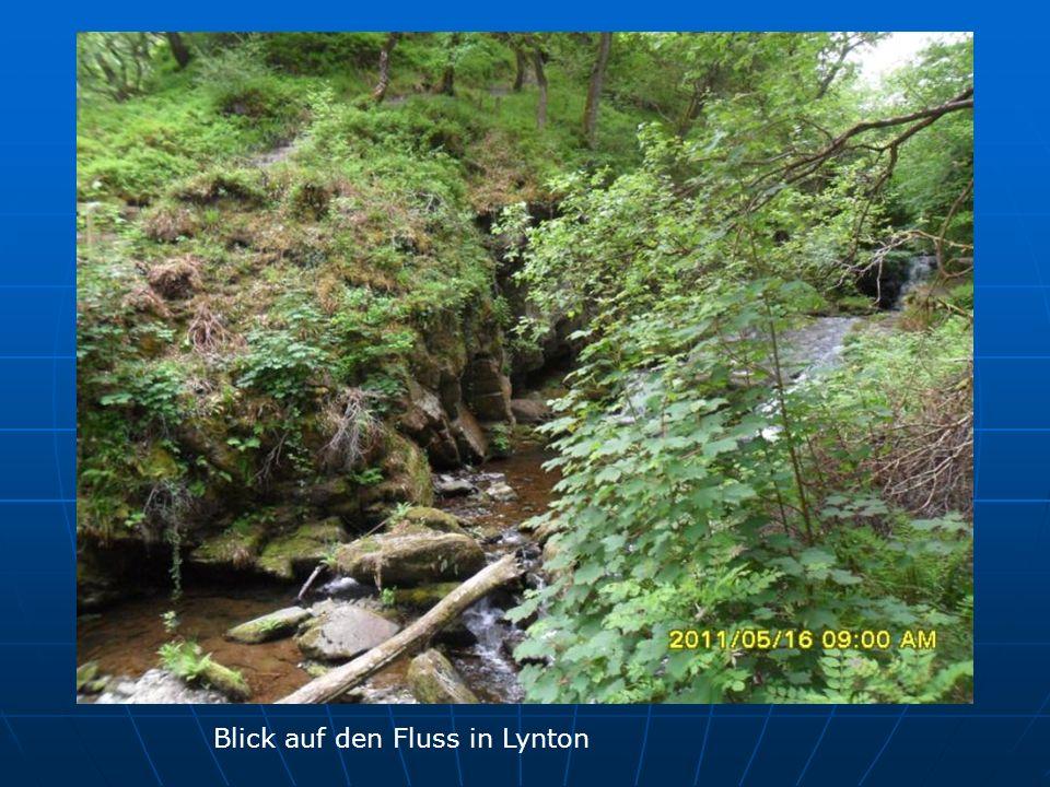 Blick auf den Fluss in Lynton