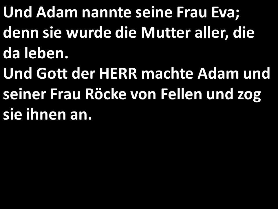 Und Adam nannte seine Frau Eva; denn sie wurde die Mutter aller, die da leben. Und Gott der HERR machte Adam und seiner Frau Röcke von Fellen und zog