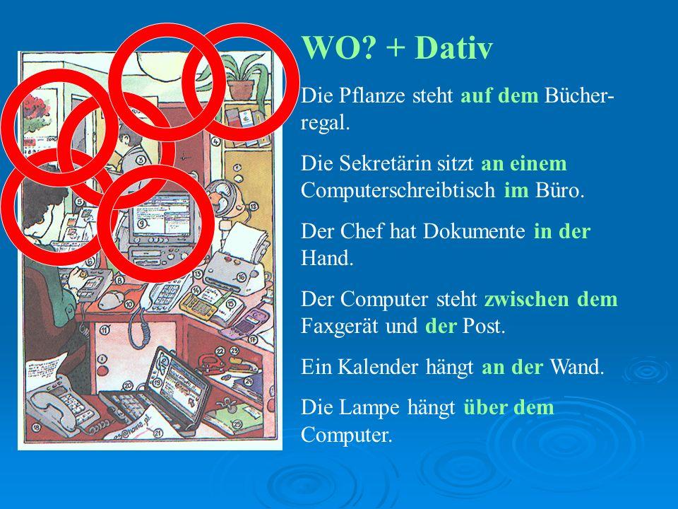 WO.+ Dativ Die Pflanze steht auf dem Bücher- regal.