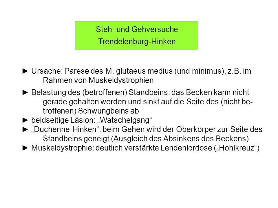 Steh- und Gehversuche Trendelenburg-Hinken Ursache: Parese des M. glutaeus medius (und minimus), z.B. im Rahmen von Muskeldystrophien Belastung des (b