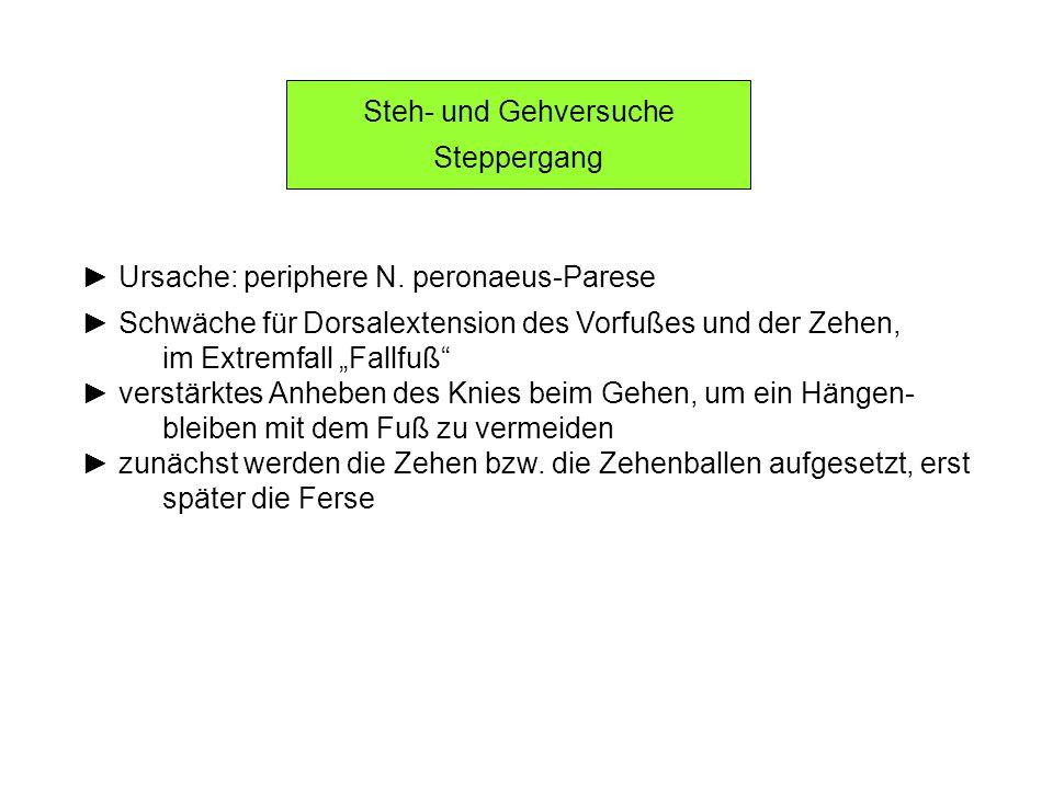 Steh- und Gehversuche Steppergang Ursache: periphere N. peronaeus-Parese Schwäche für Dorsalextension des Vorfußes und der Zehen, im Extremfall Fallfu