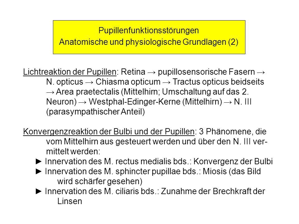 Pupillenfunktionsstörungen Anatomische und physiologische Grundlagen (2) Lichtreaktion der Pupillen: Retina pupillosensorische Fasern N. opticus Chias