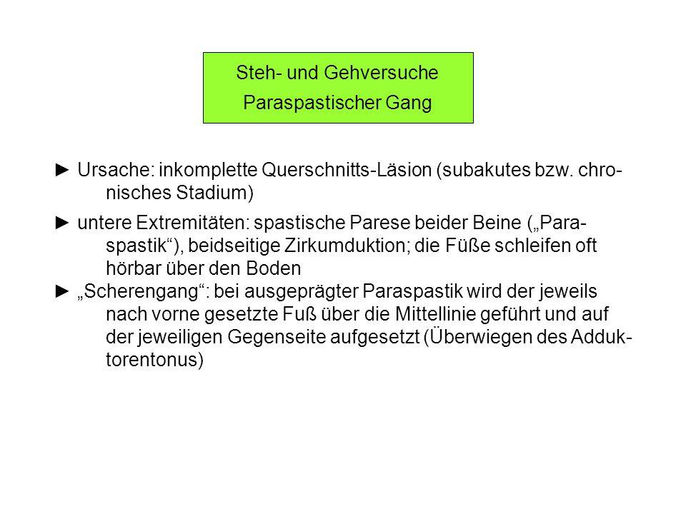Steh- und Gehversuche Paraspastischer Gang Ursache: inkomplette Querschnitts-Läsion (subakutes bzw. chro- nisches Stadium) untere Extremitäten: spasti