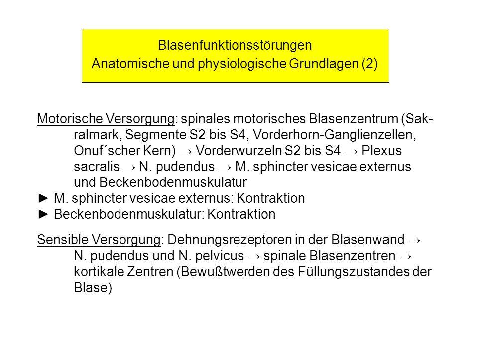 Blasenfunktionsstörungen Anatomische und physiologische Grundlagen (2) Motorische Versorgung: spinales motorisches Blasenzentrum (Sak- ralmark, Segmen