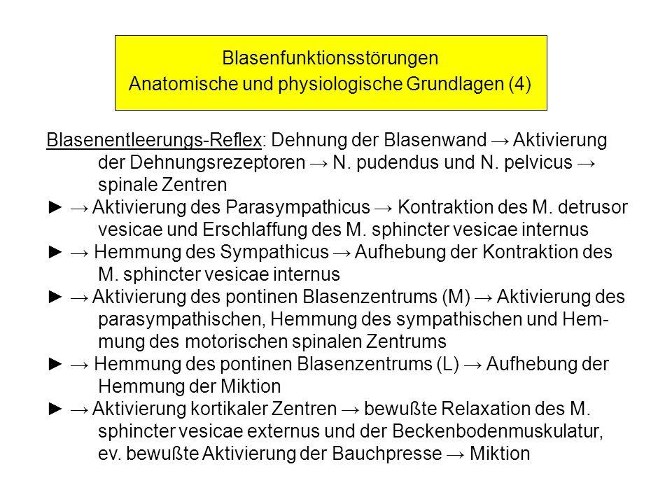 Blasenfunktionsstörungen Anatomische und physiologische Grundlagen (4) Blasenentleerungs-Reflex: Dehnung der Blasenwand Aktivierung der Dehnungsrezept