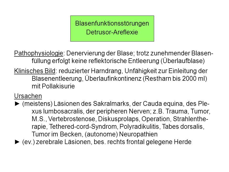 Blasenfunktionsstörungen Detrusor-Areflexie Pathophysiologie: Denervierung der Blase; trotz zunehmender Blasen- füllung erfolgt keine reflektorische E