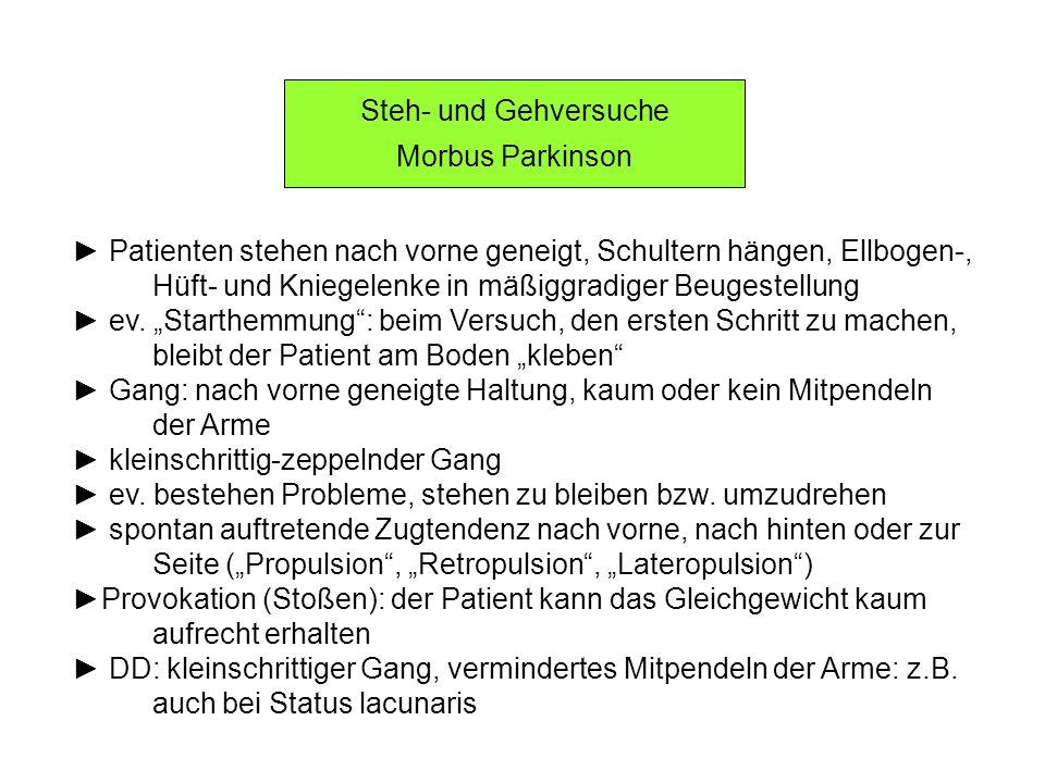 Steh- und Gehversuche Morbus Parkinson Patienten stehen nach vorne geneigt, Schultern hängen, Ellbogen-, Hüft- und Kniegelenke in mäßiggradiger Beuges