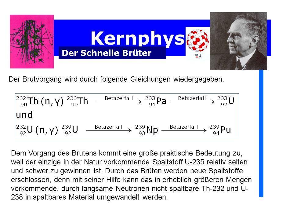 Kernphysik Der Schnelle Brüter Der Brutvorgang wird durch folgende Gleichungen wiedergegeben. Dem Vorgang des Brütens kommt eine große praktische Bede