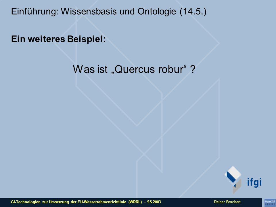 GI-Technologien zur Umsetzung der EU-Wasserrahmenrichtlinie (WRRL) – SS 2003 Reiner Borchert Einführung: Wissensbasis und Ontologie (14.5.) Ein weiter