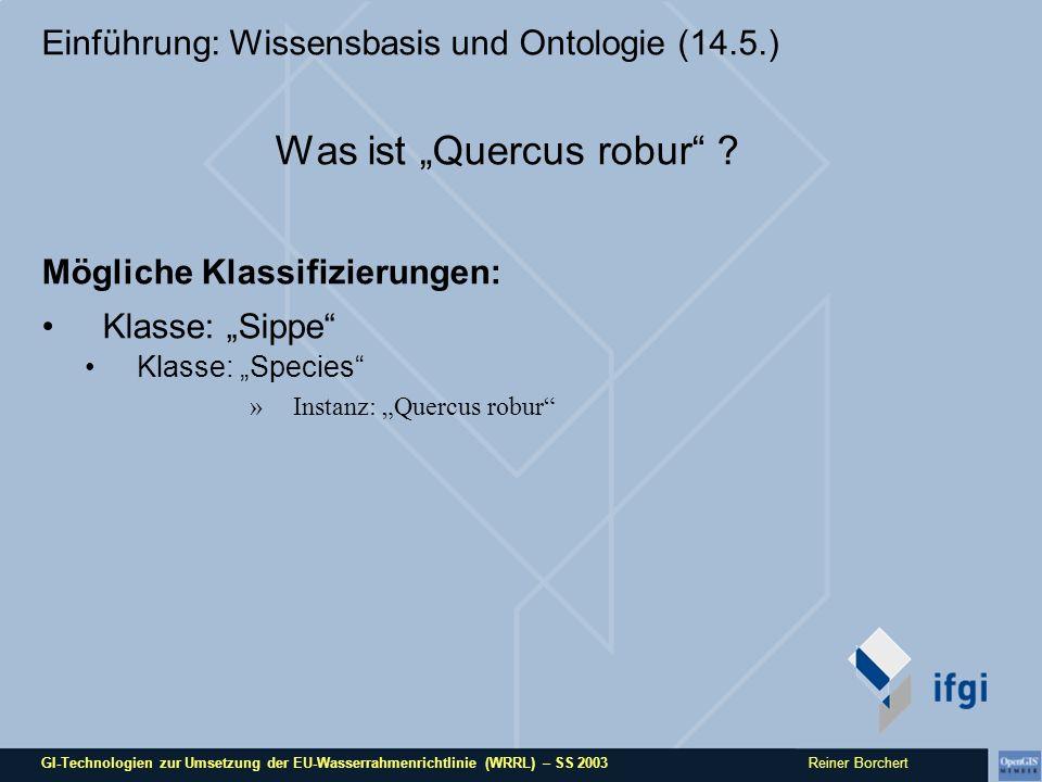 GI-Technologien zur Umsetzung der EU-Wasserrahmenrichtlinie (WRRL) – SS 2003 Reiner Borchert Einführung: Wissensbasis und Ontologie (14.5.) Was ist Quercus robur .