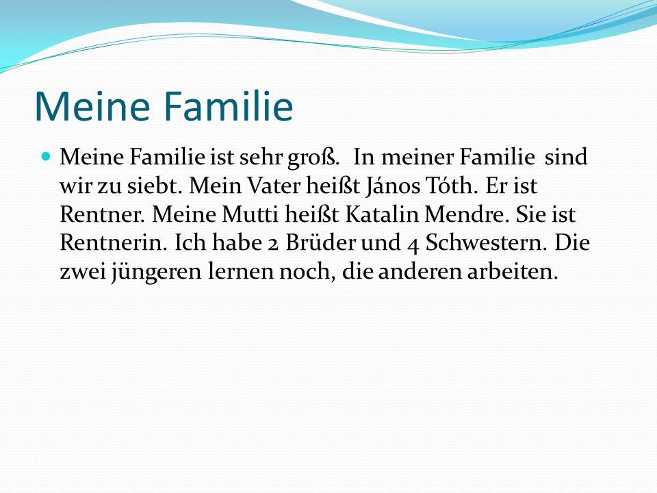 Meine Familie Meine Familie ist sehr groß. In meiner Familie sind wir zu siebt.