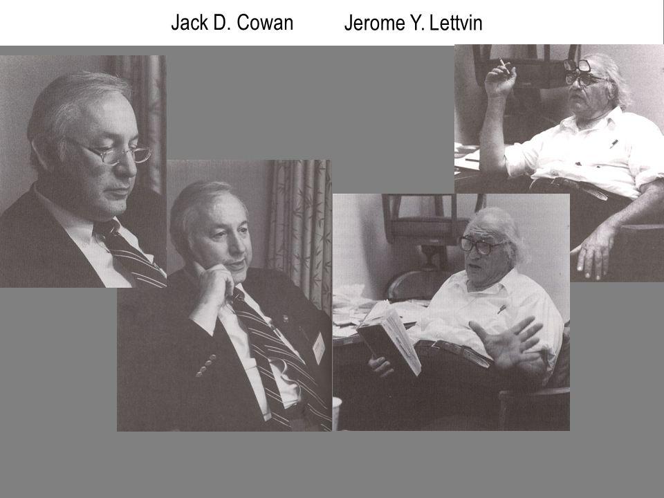 Jack D. Cowan Jerome Y. Lettvin