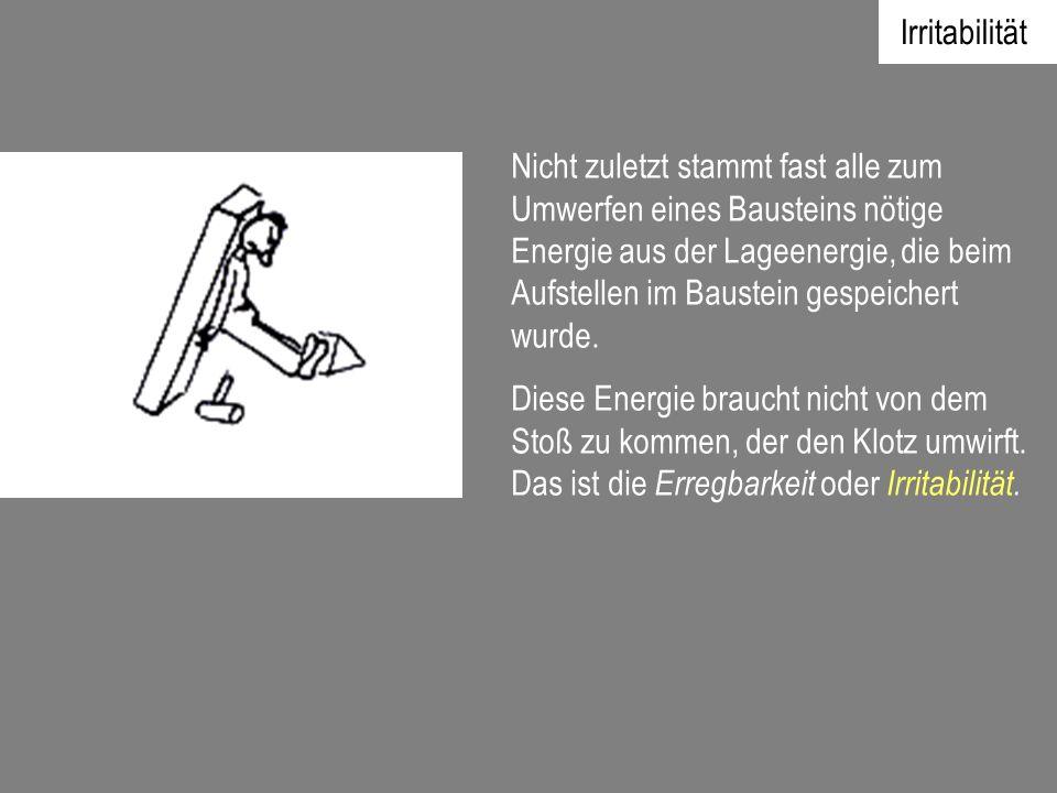 Irritabilität Nicht zuletzt stammt fast alle zum Umwerfen eines Bausteins nötige Energie aus der Lageenergie, die beim Aufstellen im Baustein gespeich