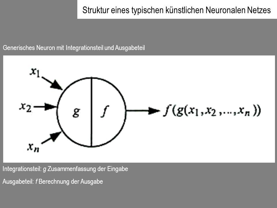Generisches Neuron mit Integrationsteil und Ausgabeteil Integrationsteil: g Zusammenfassung der Eingabe Ausgabeteil: f Berechnung der Ausgabe Struktur