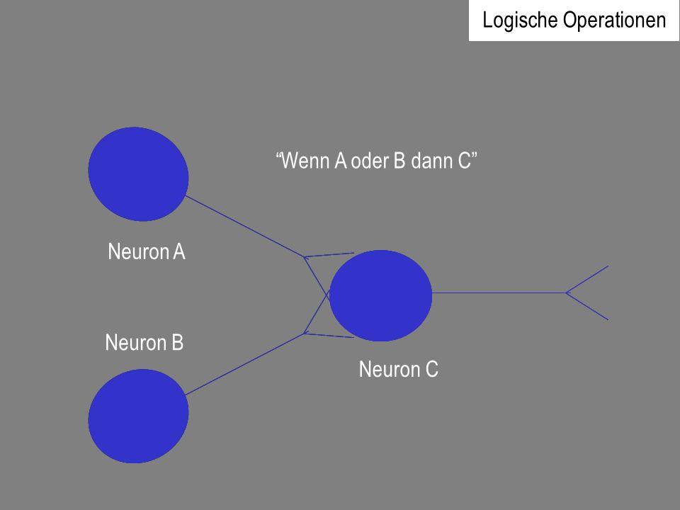 Neuron A Neuron B Neuron C Logische Operationen Wenn A oder B dann C