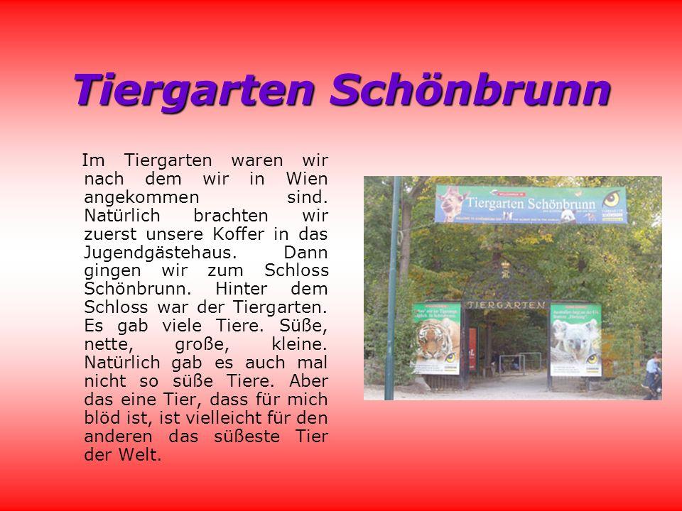 Tiergarten Schönbrunn Im Tiergarten waren wir nach dem wir in Wien angekommen sind.