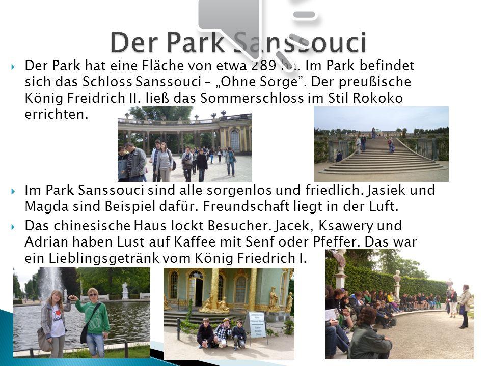 Der Park hat eine Fläche von etwa 289 ha. Im Park befindet sich das Schloss Sanssouci – Ohne Sorge. Der preußische König Freidrich II. ließ das Sommer