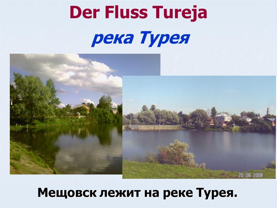 Der Fluss Tureja Мещовск лежит на реке Турея. река Турея